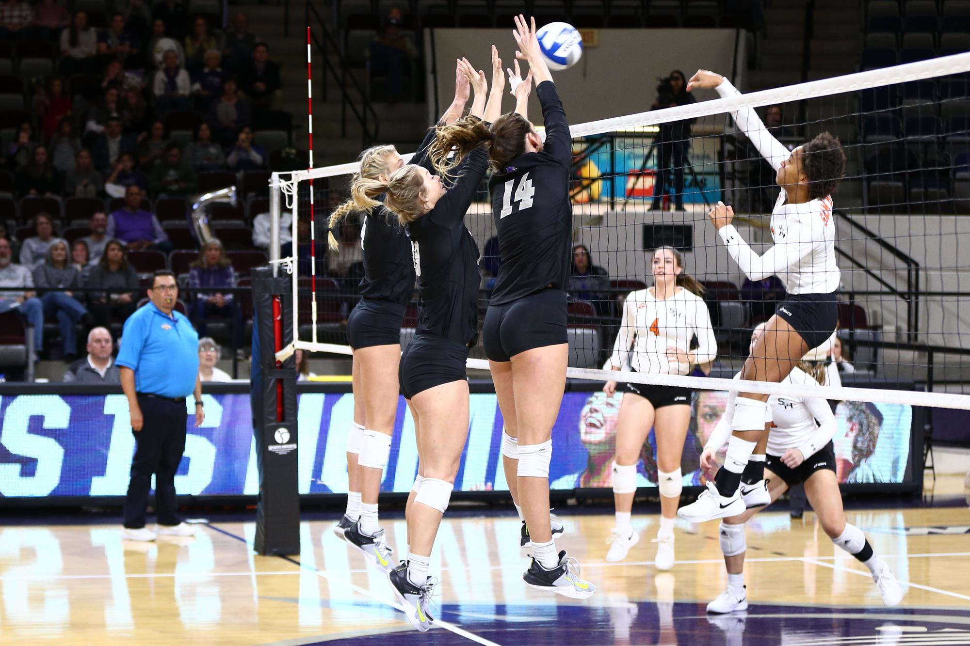 Volleyball At Texas Tech Friday For Spring Competition Abilene Christian University Athletics